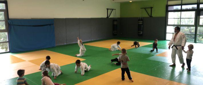 Reprise des baby judo, dès aujourd'hui